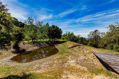 3298 Usona Ridge Road Photo #45