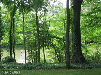 49778 Fresh Pond Neck Road Photo #10