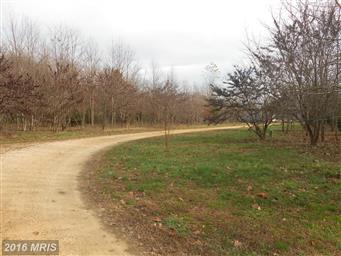 36880 Rivendell Way Photo #13