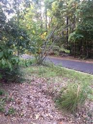 1073 Winding Trail Photo #31