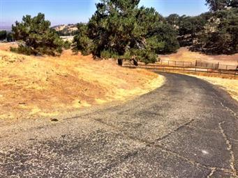 50920 Pine Canyon Road Photo #23