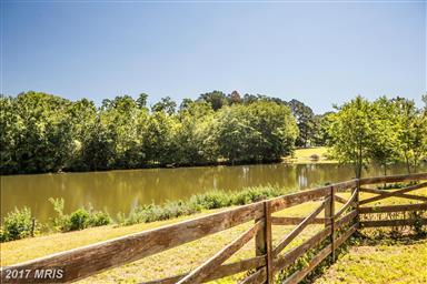 13338 Lake Court Photo #24