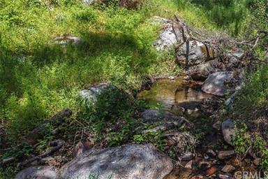 3298 Usona Ridge Road Photo #48