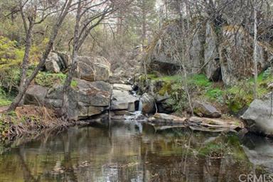 50344 Hidden Falls Road Photo #34
