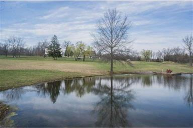 320 W CAMPING AREA RD #LOT 1 Photo #10