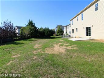 19111 Red Maple Dr Photo #28