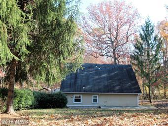 5437 Ellett Lane Photo #3
