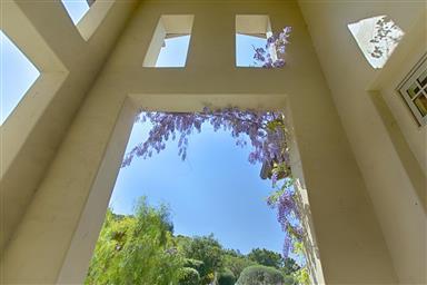 25663 Montebella Drive Photo #5