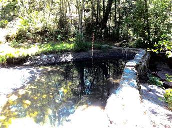 145 Shadow Creek Rd Photo #7