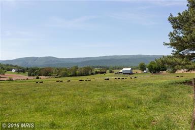 1492 Strole Farm Road Photo #29