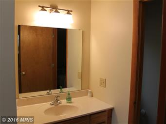 17003 Deep Forest Drive Photo #23