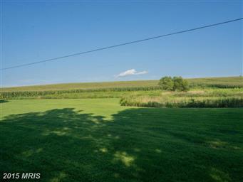 500 Country Tea Lane Photo #25