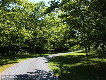 5032 Black Walnut Point Road Photo #8