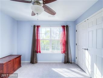 5852 Coakley Drive Photo #20