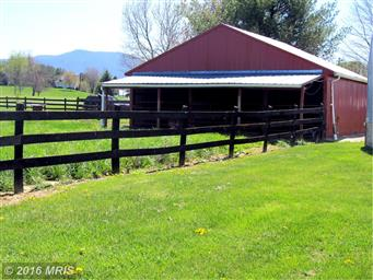 3237 Farmview Road Photo #25