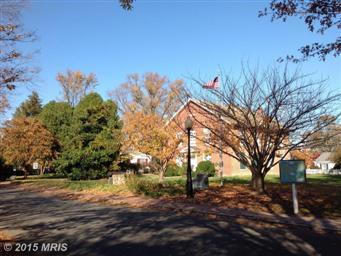 980 Ruscello Vista Ct Photo #33