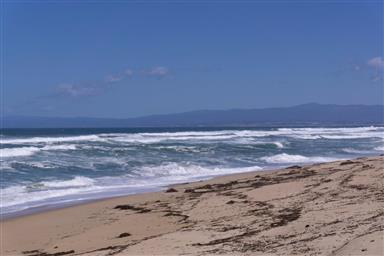 236 Monterey Dunes Way Photo #6