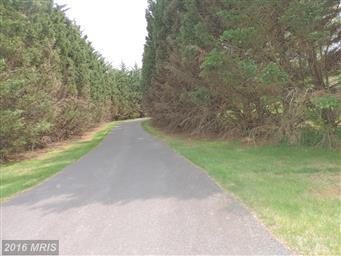 138 Mountain View Lane Photo #2