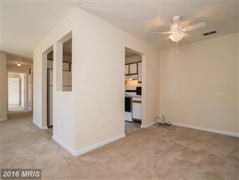 110 Timberlake Terrace #2 Photo #4