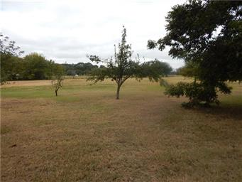 6136 Texas Highway 154 S Photo #5