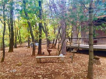 10764 Rosa Trail Photo #37