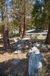 16001 Wildwood Drive Photo #30