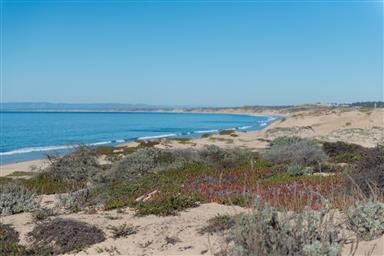 125 Surf Way #331 Photo #17