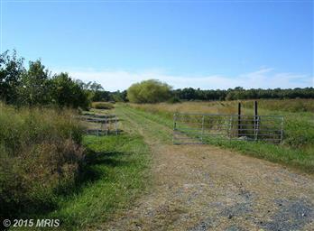4566 Harrisville Road Photo #13