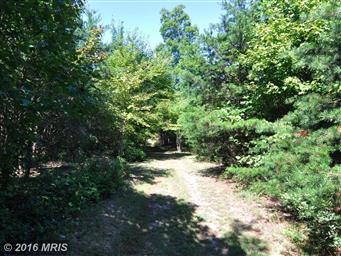 300 Waterberry Dr Photo #8