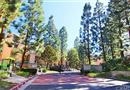 1445 Brett Place #122, San Pedro, CA 90732