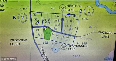 10184 Thomasson Lane Photo #26
