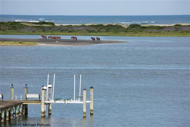12545 Ocean Reef Drive Photo #5