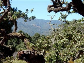 2 La Rancheria Photo #13