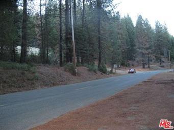 3381 Wildwood Road Photo #5