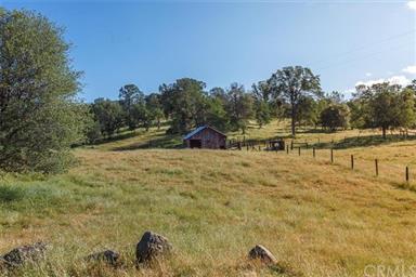 3979 Oak Grove Road Photo #24