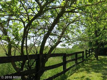 690 Ben Venue Road Photo #6