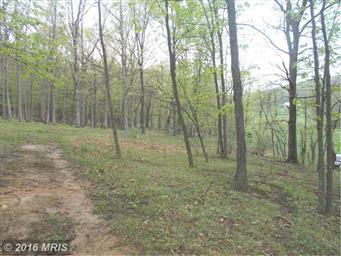 315 Meadow View Lane Photo #29
