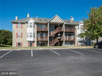 110 Timberlake Terrace #2 Photo #24