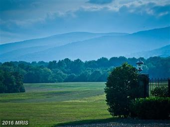 1482 Zachary Taylor Highway Photo #3