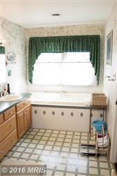 12113 Itnyre Road Photo #19