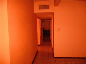 10361 Alcan Street Photo #12
