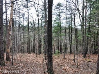 3191 Hunting Ridge Road Photo #11