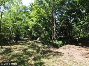 300 Waterberry Dr Photo #28