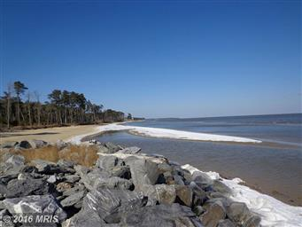 14751 Bay Front Drive Photo #6