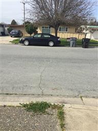 925 Lupin Drive Photo #1