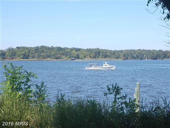 26406 Arcadia Shores Circle Photo #30
