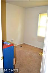 1166 Meander Drive Photo #11