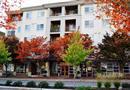 111 108th Avenue NE #A408, Bellevue, WA 98004