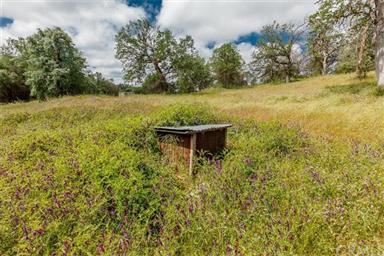 3979 Oak Grove Road Photo #50