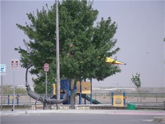 5901 Redstone Mesa Court Photo #42